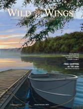 Wild Wings2020年
